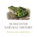 Schechter's Reptiles & Amphibians of North America icon