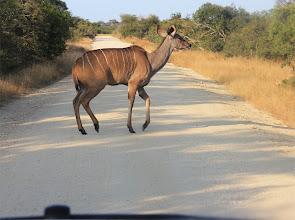 Photo: fotoimpressie Zuid Afrika mei 2014
