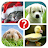 Guess the word ~ 4 Pics 1 Word logo