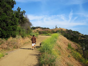 Photo: Nearing Mt. Hollywood Drive in Western Canyon and the look-out terrace visit point
