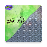 Halakuu Khan (Urdu Book)
