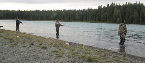 Photo: Fly fishing for red salmon on the middle Kenai river.