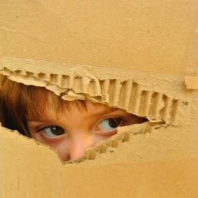 I am here by Yvonne Katcher - Babies & Children Children Candids ( child, hiding, box, hair, eyes )