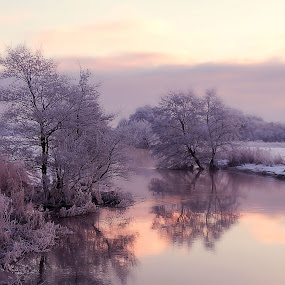 Winter, Denmark, 2016 by Inna Fangel - Uncategorized All Uncategorized ( water, sky, winter, nature, snow, sunrise )