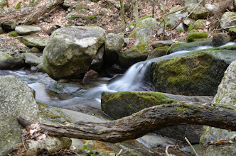 Photo: Scenic brook at Townshend State Park by Linda Carlsen-Sperry