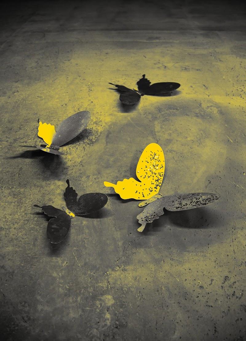 Farfalla di antonella_sessolo