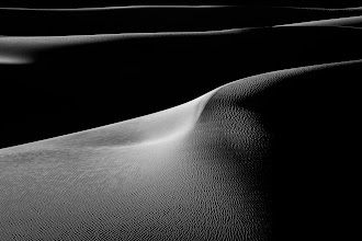Photo: Curvy  The dunes of Death Valley kicked my butt. My legs and back were so sore after tromping through these dunes for a couple hours. This was taken at sunrise on our first morning. The light and texture just screamed black and white so that's where I went with it.  #dvonewaytrip13  #blackandwhitephotography
