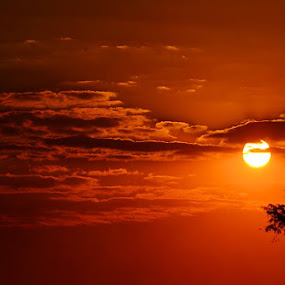 African sunset by Graeme Wilson - Novices Only Landscapes