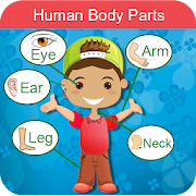 Learn Body Parts: Body Parts Photo & Pronunciation