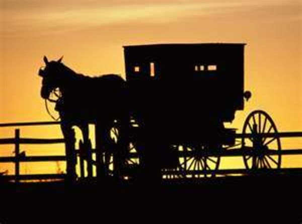 Cinnamon Streusel For Amish Friendship Bread Recipe