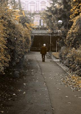 L'autunno della vita di Elfuego