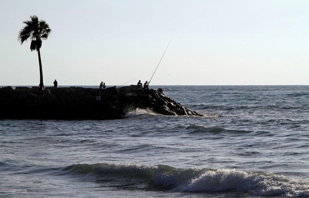 Kuba stel 'n nuwe visvangbeleid in omdat visvoorraad drasties daal
