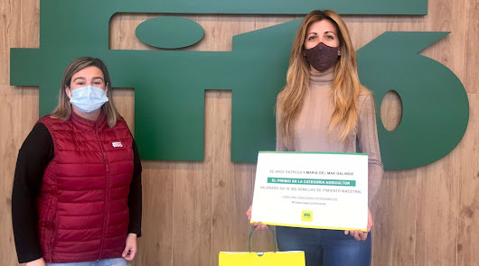 Semillas Fitó y Proexport siguen promoviendo el pimiento en Murcia