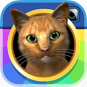 InstaKitty 3D-Virtual Cat Sim