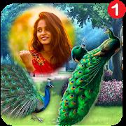 Peacock Photo Frame : Garnish your photos