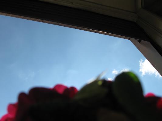 Occhiata al cielo di Roccia83