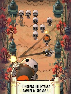Nindash Skull Valley Apk 7