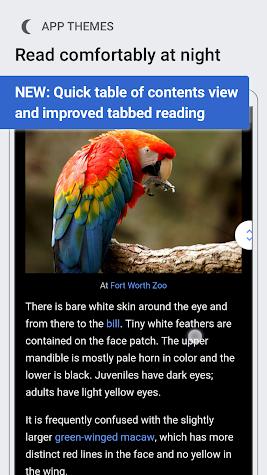 Wikipedia Beta Screenshot