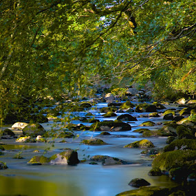 River Afon- Wales by Ferdinand Debnárik - Nature Up Close Water