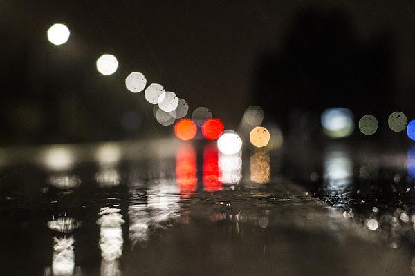 Le luci della Pioggia di gattopisa