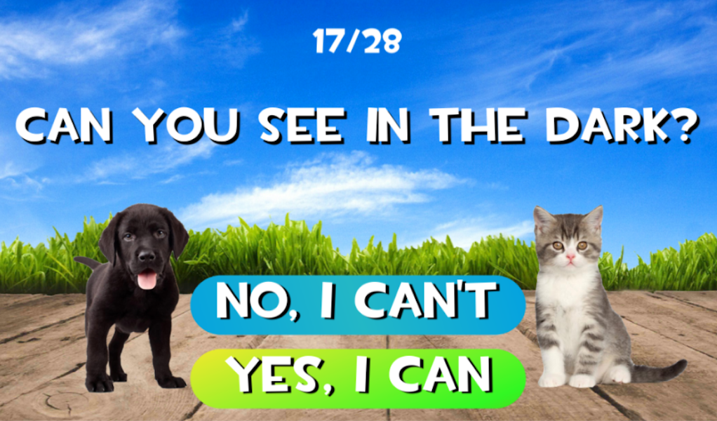 Test what cat or dog am I? Animal simulator
