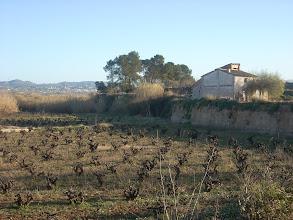 Photo: El Barrancó, que creua el Pla de Colata de Sud a Nord, i que vessa les seues aigües al Riu d'Albaida, al costat de la Font d'Ambrosio.