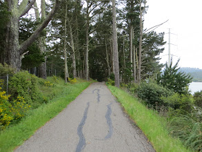Photo: More Sawyer Camp Trail.  Brought to you by Canon PowerShot