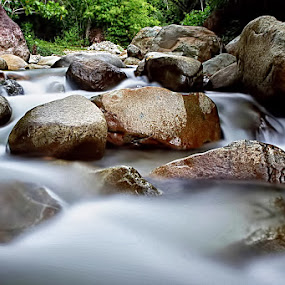 IN THE RIVER by Fammz Fammudin - Nature Up Close Rock & Stone ( water, nature, rock )