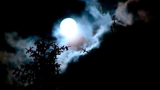 rituales-noche-san-juan