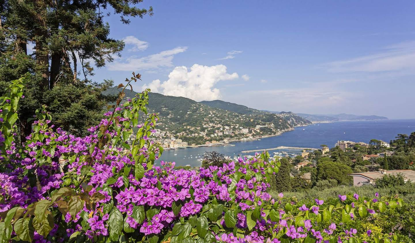Apartment with terrace and pool Rapallo