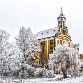 Castle of Kirchberg on the Woods  by Franz  Adolf - Buildings & Architecture Public & Historical ( tree, ice, castle )