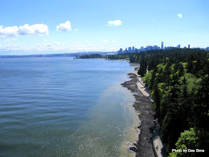 Photo: (Year 2) Day 327 -  Looking Down at Stanley Park from Lions Gate Bridge