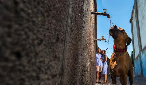 Fotógrafo de bodas Sevilla (Antoniolopez). Foto del 09.08.2018