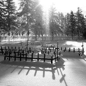 Cemetery by Patrick Provencher - Landscapes Sunsets & Sunrises ( winter, shadow, sunset, cemetery,  )