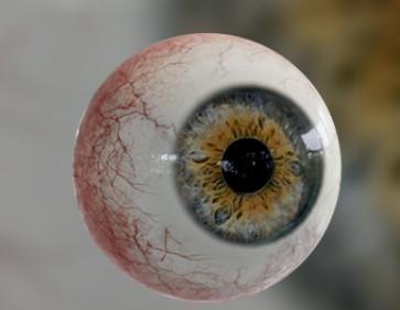 C:\Users\User\Desktop\для статьи\очки материал\аа\глаз.jpg