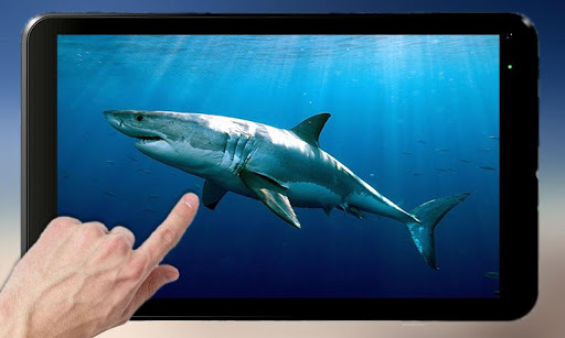 Shark Attack - Magic Touch 2.1 screenshots 5