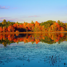 Fall_2 by Michelle Kelly - Landscapes Waterscapes