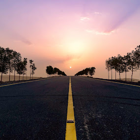 Road to the Light II by Souhayl Bk - Landscapes Deserts ( desert, dubai, uae, trees, sunrise, road, sun,  )