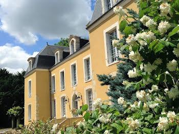 château à Saint-Denis-les-Ponts (28)
