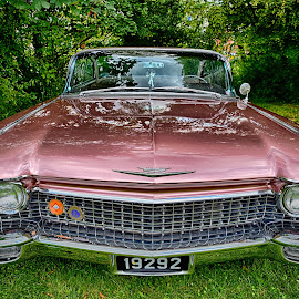 Vintage Coupé by Marco Bertamé - Transportation Automobiles ( cadillac, vintage, chrome, headlight, number, 2, coupe de ville, number plate, 1, american, 9, pink, oldtimer, bumper )