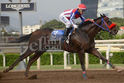 Frenchie (Southdale) brilló en el Clásico Socios Vitalicios del Jockey Club del Perú (1200m-Arena-MONT).