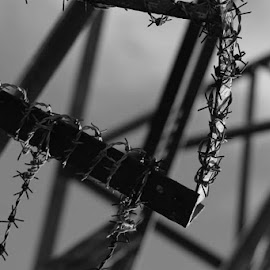Barbed by Jakob Feather - Abstract Patterns ( blackandwhite, patterns, monochrome, creative, photographer, artistic, bnw, close up, photography )