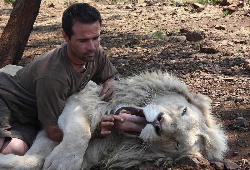 """Photo: Кевин Ричардсон - автор нескольких книг о диких животных, а так же является продюсером фильма """"Белый лев"""""""