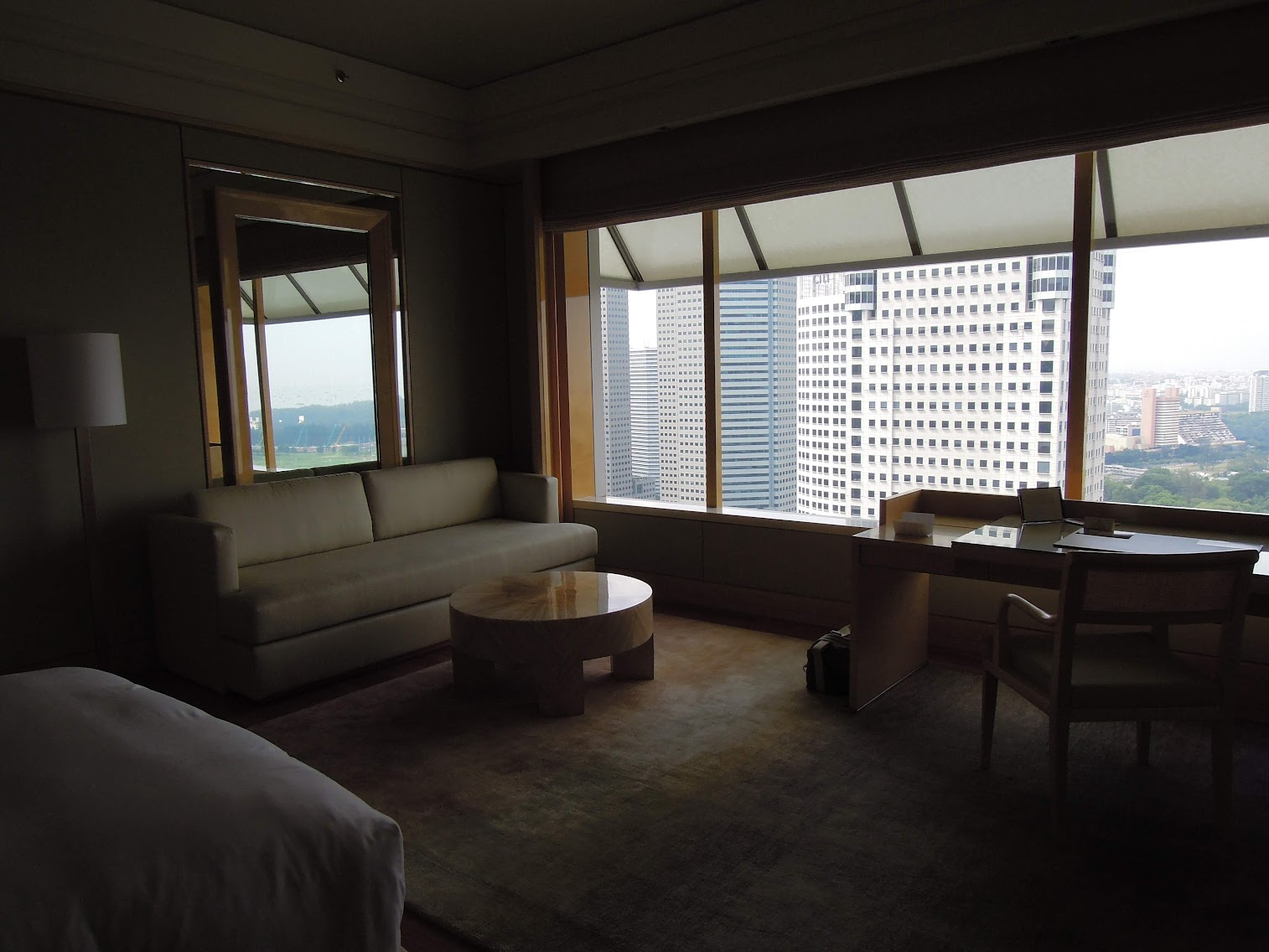 The Ritz-Carlton Millennia Singapore Room 3109