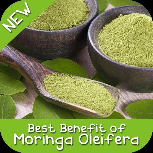 Moringa oleifera wird verwendet, um Gewicht zu verlieren