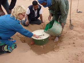 Photo: Voorzichtig planten wij 2 tamarisk takken in de Groasis Waterboxx.