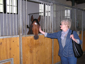 Photo: BA010115 Janow Podlaski (Wygoda) - stadnina koni