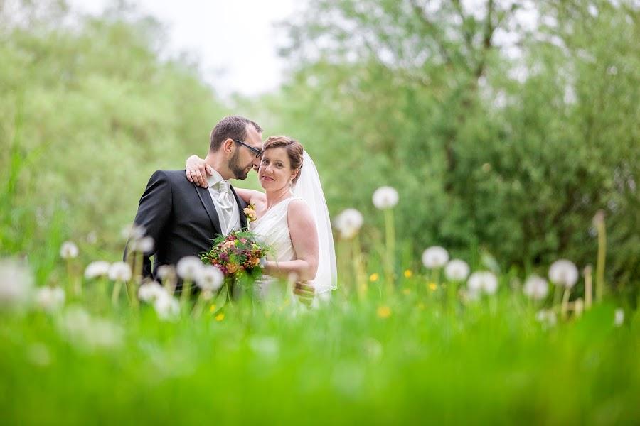 Hochzeitsfotograf Beata Zys (BeataZys). Foto vom 13.06.2016
