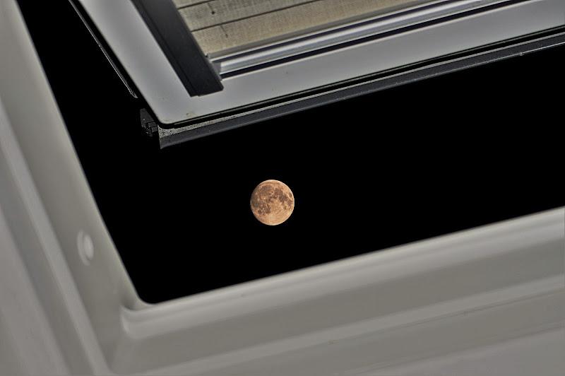 La finestra sul tetto di DMax