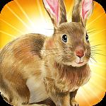 Kaninmester Icon